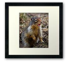 The question isn't who is going to let me; it's who is going to stop me.  Framed Print