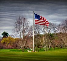 Love My Country! by Monica M. Scanlan