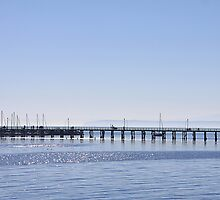 White Rock Pier by Alyce Taylor