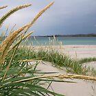 Ferkingstad beach by Algot Kristoffer Peterson
