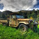 Old FJ40 by Richard  Cubitt