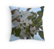 Wild Pear Blossoms Throw Pillow