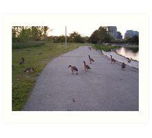 A evening walk in the park Art Print