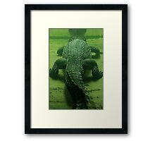Going The Right Direction Framed Print