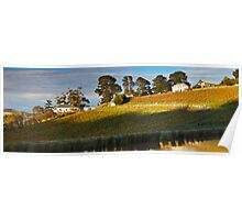Tinderbox Vineyard in Autumn Poster