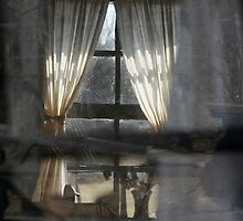 window  by Lisa Milam