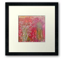 Marin County California: Spring Rose Framed Print