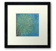 Sunny California palm tree in Spring Framed Print
