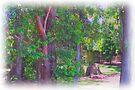 Trees by Margaret Stevens