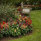 A Quiet Corner - Hunter Valley Gardens Series by reflector