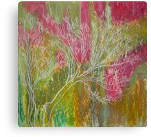 California Spring: Pink flame tree Canvas Print