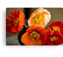Multi coloured poppies Canvas Print
