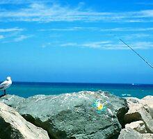 Pro Hart the seagull by Wilhelmina