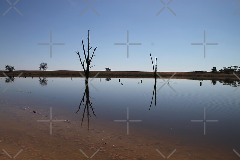"""""""Still Water Reflections"""" Framed Prints by Michelle Munday ..."""