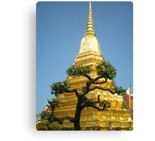 Grand Palace Bonsai Canvas Print