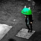 Ga-loomph Went the Little Green Frog by Jim McDonagh