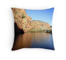 Champagne Gorge Throw Pillow