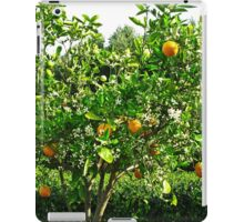 Orange Tree - Hunter Valley Gardens iPad Case/Skin