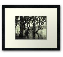 Lake Ainswoth - Lennox Head  Framed Print