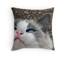 Blue eyes Cooper Throw Pillow