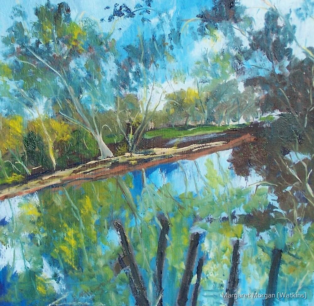Goulburn River Seymour Victoria Australia by Margaret Morgan (Watkins)