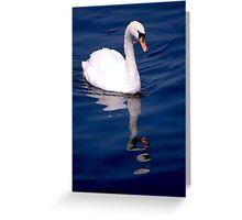 Lake Windermere Swan Greeting Card