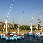 Sailboats moored on the Nile by Marilyn Harris