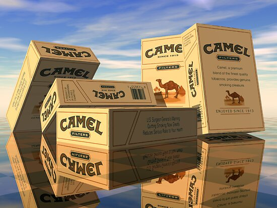 100 Camels by Hugh Fathers