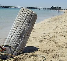Old Busselton jetty pylon by Michelle Newman