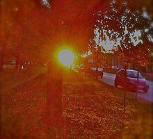 GOOD MORNING  MY  KRAKÓW . by  Brown Sugar (iphone 3G). The Doors - Roadhouse Blues - John Lee Hooker & Jim Morrison ( hard rock ) Yeah Friends ! Let's dance ! views (123)! by © Andrzej Goszcz,M.D. Ph.D