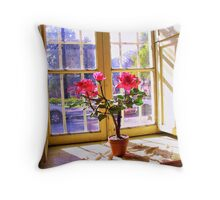 Red Flowers Behind the Window Throw Pillow