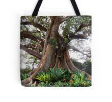 Sydney Park Macrophylla Tree Tote Bag