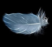 Baby Fractal Feather by lisa1970