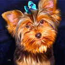 Teacup yorkie Art Prints from Painting by Iain McDonald