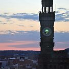 Baltimore Clocktower at Sunset by Robin Lee