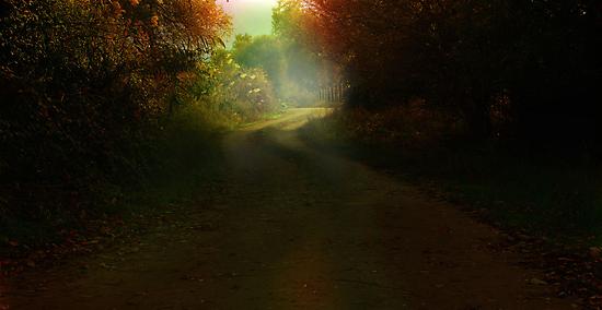 mistique country road by Mustafa UZEL