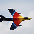 Hawker Hunter Profile by jabisfab