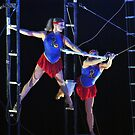 Flying Trapeze by Robin Lee