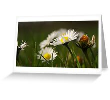 Hero, just for one day Greeting Card