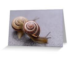 Who Says Snails Are Not Sporty? Greeting Card