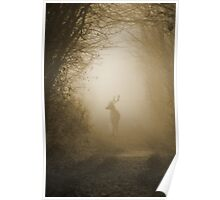 Stag in the Mist  Poster