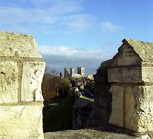 York Minster from Roman City Wall by hmartinphotos