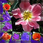 Spring Sunshine Tulips Collage by BlueMoonRose