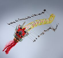 Chinese dragon flying high by DAVIDPOLONOWSKI