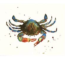 Cranky Crab Photographic Print