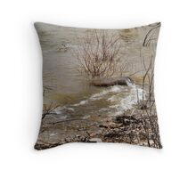 Winds that Move the Waters Throw Pillow