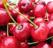 Cherries by Sue Ellen Thompson
