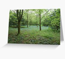 Blue Glade Greeting Card
