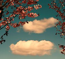 April Clouds by Aimee Stewart