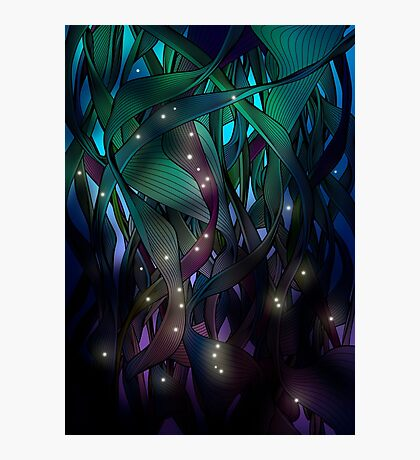 Nocturne (with Fireflies) Photographic Print